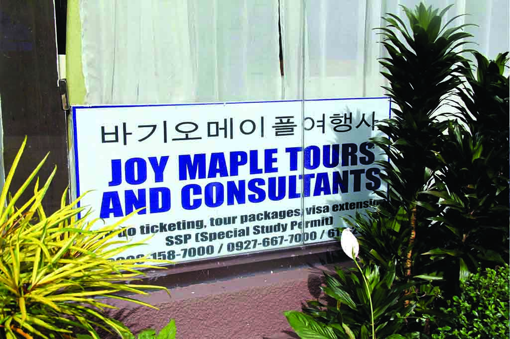 study english baguio maple tour